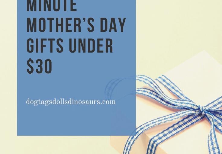 Ten Last Minute Mother's Day Gift Ideas UNDER$30